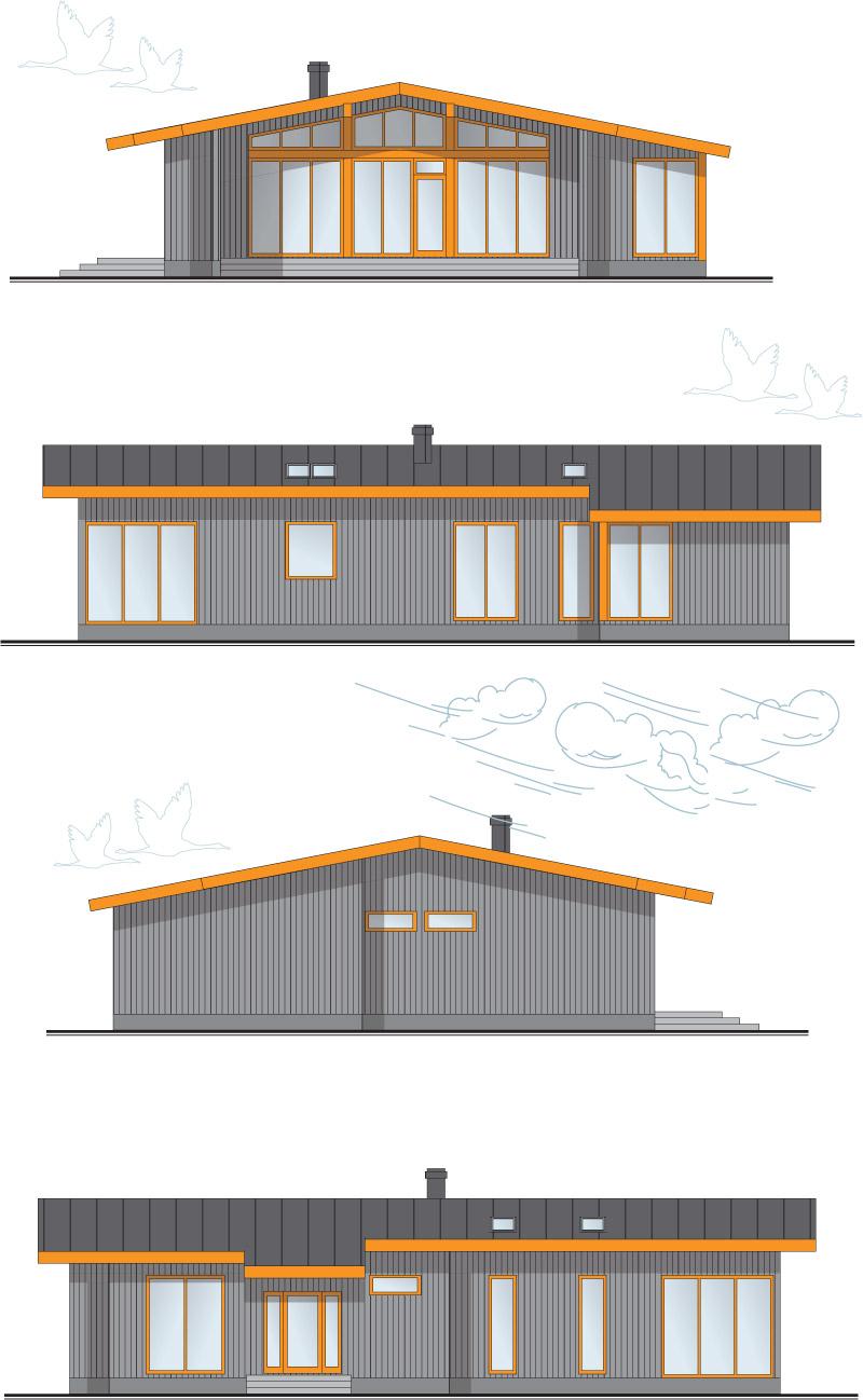 """Mājas projekts vienā stāvā """"Smiltsērkšķis"""" - fasādes"""