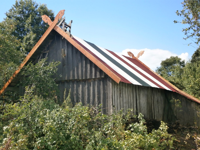 Krāsains pagraba jumts, pagraba jumta renovācijas projekts