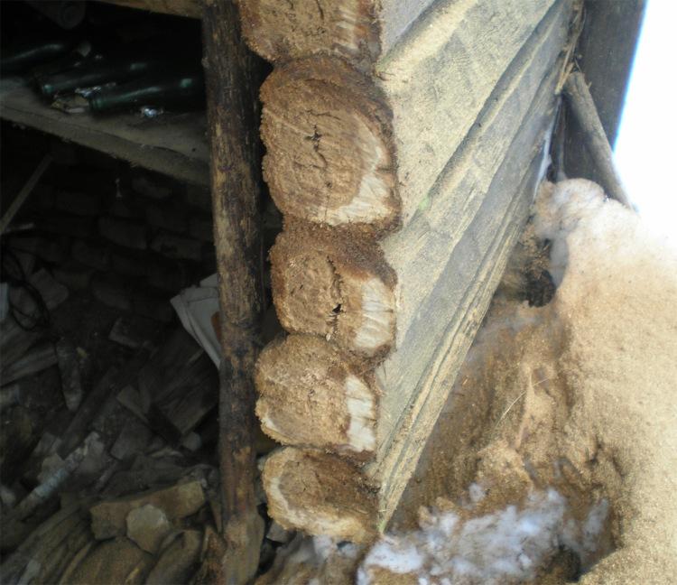 Guļbaļķu sienas mitruma ietekmē, 30 gadu ekspluatācijas laikā