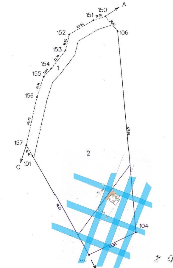 Āderu plāns zemes gabalam Liezerē ar māju un pirti