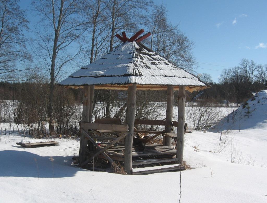 Lapene ziemā