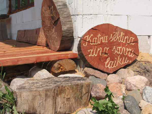 kokgrebumi koka baļķa ripās