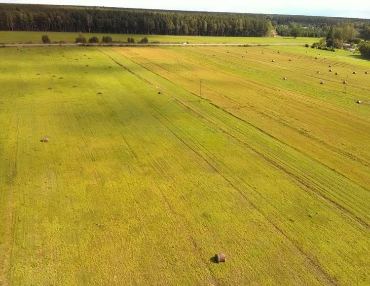 Aerofotogrāfija uzņemta ar gaisa pūķi